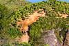 IMG_5088 (sergeysemendyaev) Tags: 2016 rio riodejaneiro brazil pedradagavea рио риодежанейро бразилия hiking adventure best пешийтуризм путешествие приключение travel nature природа пейзаж landscape scenery rock mountain гора скала высоко high forest лес