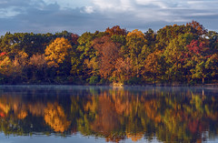 Aurelia (Zouhair Lhaloui) Tags: aurelia fall autumn trees forest leaves tree reflection water lake clouds sky beautiful nature midwest americannature warrenvilleillinois colorful red yellow green zouhairlhaloui zlphotography d810 sigma70200f28 sale print 2016