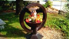 Autumn flower decoration (Maenette1) Tags: autumn flower decoration spiespubliclibrary garden menominee uppermichigan flicker365
