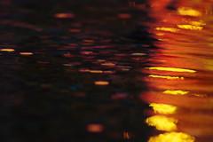 Crimson Glitter (mastercharlz) Tags: color water fountain focus bokeh vibrant ripple