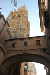 Catedral de Toledo (Ana De Haro) Tags: city espaa spain day catedral sunny ciudad toledo