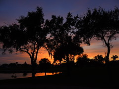 December 27 Sunset. (Jim Mullhaupt) Tags: pink blue trees sunset red wallpaper orange sun lake color reflection water weather silhouette yellow clouds landscape evening pond oak nikon flickr sundown florida dusk palm tropical coolpix sarasota cortez bradenton p510 mullhaupt jimmullhaupt