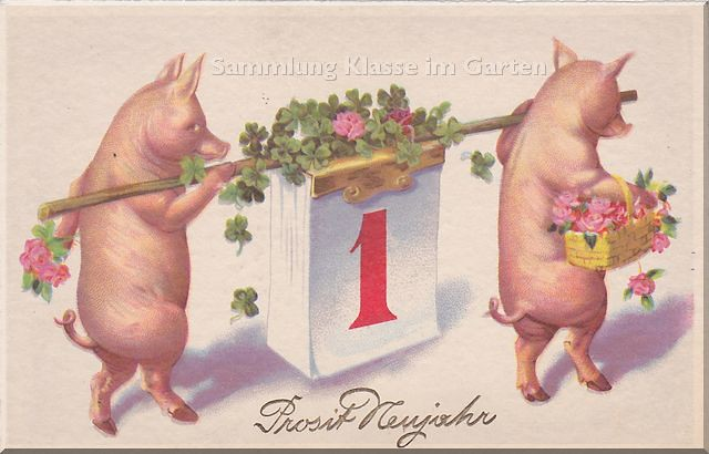The Worlds Best Photos Of Neujahr And Schwein Flickr Hive Mind