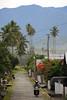 Ampana, Central Sulawesi (-AX-) Tags: indonesia arbre montagnes ampana sulawesitengahcentralsulawesi