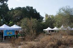 141018_7744_600px.jpg (Weeding Wild Suburbia) Tags: park gardens publicgardens spnp
