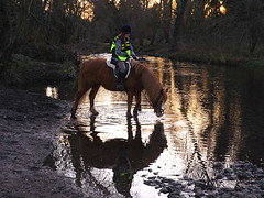 Me and my girl (Bessierocks' Photography) Tags: horse lake reflection reflections river mare meadows riding pony arab chestnut welsh equestrian hacking equine welshx