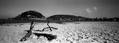 Donostia - San-Sebastian (Mikhail Serbin) Tags: ocean panorama film analog fujifilm sansebastian basque ilford xpan donostia cotedebasque