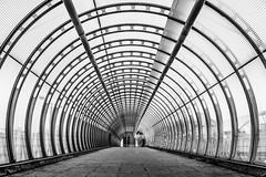 London   |   Poplar High Key (JB_1984) Tags: tunnel footbridge dlr docklandslightrail station blackandwhite bw mono symmetry pattern highkey hdr highdynamicrange poplar isleofdogs docklands londonboroughoftowerhamlets london england uk unitedkingdom nikon d7100 nikond7100