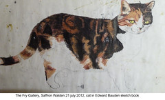 2012 Jul 21 Saffron Walden Bawden cat 2 (dalevreed) Tags: england2012
