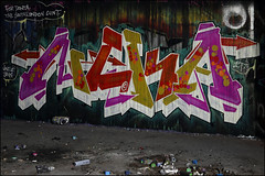 Neka (Alex Ellison) Tags: urban graffiti boobs graff northlondon neka mhb 1t nekah neks