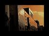 "ginza matsuya (karakutaia) Tags: sun tree love nature japan paper temple tokyo heart afotando ""flickraward"" flickrglobal allbeautifulshotsandmanymoreilovenature flowerstampblackandwhite transeguzkilorestreetarturbanagreatshotthisisexcellentcontestmovementricohgxr""serendipitygroupbluenatureicapturecardjapanesepapercardflickraward5""j trasognoerealtabstractelementsorganizersimplysuperb"