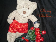 Be my Valentine ... Ted is looking for his Anastasia Steele (pefkosmad) Tags: bear red roses ted love saint funny heart teddy boxers chocolate kisses valentine romance shorts bouquet greetings underpants valentinesday patronsaint tedricstudmuffin fiftyshadesofgrey anastasiasteele christiangrey