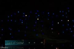 let it snow (ievaxt) Tags: blue winter stilllife snow dark lights penguin book nikon artistic bokeh literature paperback stories letitsnow penguinbooks johngreen laurenmyracle maureenjohnson d5100 nikond5100