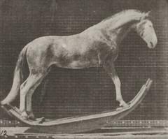 Horse Hornet rocking (rbm-QP301M8-1887-649a~12)