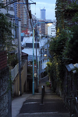 (  / Yorozuna) Tags: morning japan stairs tokyo streetlight streetlamp steps earlymorning slope mejirodai  takada               toshimaward bunkyoward hinashizaka