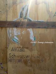 Street art - Egyptian style (tommyajohansson) Tags: streetart geotagged redsea egypt sharmelsheikh gypten sinai egypte egypten faved rotesmeer misr merrouge rdahavet tommyajohansson egyptianstreetart