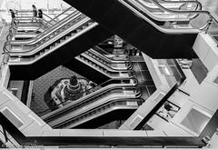 Central Library - I-13.jpg (Theunis Viljoen LRPS) Tags: centrallibrary netherlands rotterdam