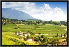 Le vignoble de Jongieux (De Bretagne et d'ailleurs) Tags: france jongieux nuages savoie tamron2875 canon5dmkii ciel montagnes vignes glise