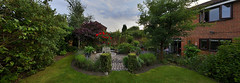 Our garden, Bloxwich 23/07/2016 (Gary S. Crutchley) Tags: garden horticulture bloxwich weekend summer uk great britain england united kingdom urban town townscape walsall walsallflickr walsallweb black country blackcountry staffordshire staffs west midlands westmidlands nikon d800 panorama 1635mm f40g af s ed nikkor