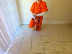 Orange Jumpsuit (boblaly) Tags: orange prison prisoner jail inmate handcuffs cuffed shackled shackles chains chained restraints detention convict arrested belly chain jumpsuit uniform frontstack legirons bluebox