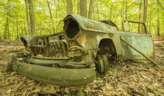 Old Chevy (William_Doyle) Tags: old trees chevrolet nature car woods nj rusty july hillsborough 2016 sourlands