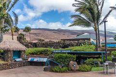 Maui Trip 2016 (Aaron Suchy Photography) Tags: lanai island hawaii maui