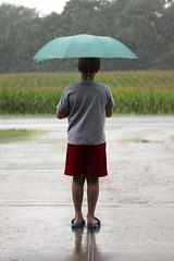 Shall I Cross? 08122016 (Orange Barn) Tags: umbrella rain water wet 116picturesin2016 rainwear