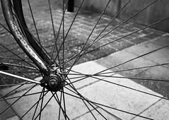 Wheel of fortune (Ren-s) Tags: bruxelles belgique belgium wheel roue vlo bike streets rue cobblestones pavs blackandwhite noiretblanc city rayons spokes bokeh contrast europe