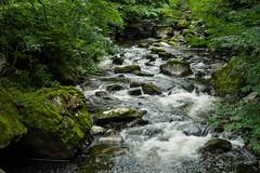Walk Lynton to Watersmeet E7120254_10 (tony.rummery) Tags: longexposure england water rock river rocks stream unitedkingdom somerset olympus gb omd watersmeet lynton em10 mft microfourthirds northdevondistrict