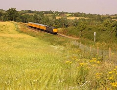 Summer heat at Brantham (Chris Baines) Tags: test plant train rail network ragwort 37611 brantham