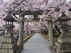 Omura Kouen Nagasaki