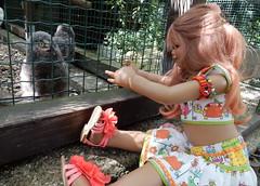 Hallo kleine Schneeeule ... (Kindergartenkinder) Tags: dolls himstedt annette kindergartenkinder essen park gruga garten kind personen schneeeule tivi