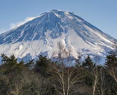 2016 Winter Fuji (shinichiro*) Tags: 20160125sdim0277 2016 crazyshin sigmasd1merrill sd1m sigma18300mmf3563dcmacrooshsm fuji daylight  yamanashi japan january winter snow