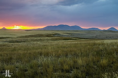 IMG_8631 (larzz4444) Tags: chester montana winterwheat chestermontana gleaner drylandfarming sweatgrasshills joplinmontana wheatharvest sunset