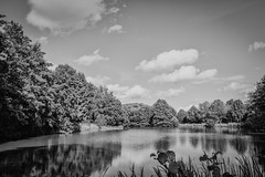 Lake in 1963 (photojaker00) Tags: d5200 nikon photography picoftheday jaker photo dslr awesome lightroom adobe photoshop outdoor einfarbig feld landschaft meer himmel heiter wasser wehat field endless sky stars night light road forest sun shining butterfly flower lake sea box