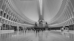 Open Space (Lojones13) Tags: beautiful wide openspace worldtradecenter building architecture newyork nikond5200 transportationhub blackandwhite monochrome