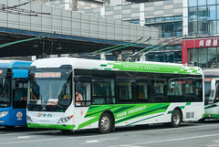 创新电车/Innovative Trolleybus (KAMEERU) Tags: guangzhou bus public transportation trolleybus zk6125bevg9 innovation technology