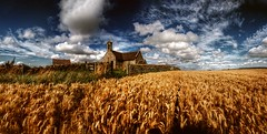 St. Andrews (Jamie  Sproates) Tags: wwwjamiesproatescom st andrews church abandoned panorama hdr canon 5d mkiii mk3 corn field