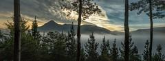 Sierra de Aralar (Tatxon) Tags: landscape paisaje panorama dawn amanecer montaa mountain mountains arboles trees pines niebla fog mist txindoki