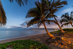 Morning Aloha (PIERRE LECLERC PHOTO) Tags: maui hawaii kihei sugarbeach beach sunrise dawn morning calm peaceful serene tranquil palmtrees sand water sea pacificocean westmauimountains aloha hawaiiprints pierreleclercphotography tropical landscape travel vacation destination hawaiian scenic