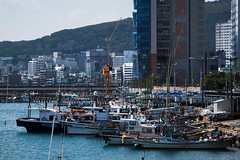 Fishing Boats (PhotoWY) Tags: seoul busan traditional korean food seafood cafes park palaces flower