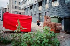 Wrocaw, Poland. (wojszyca) Tags: contax g2 zeiss biogon 21mm fuji fujicolor c200 duel friend photographer photowalk urban urbex decay sofa armchair wrocaw