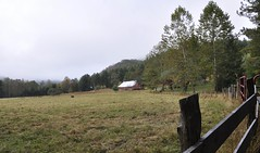 Rowlesburg, West Virginia (3 of 3) (Bob McGilvray Jr.) Tags: rowlesburg westvirginia bo baltimoreohio caboose wood wooden private farm sevenisland railroad train tracks c2141 cupola