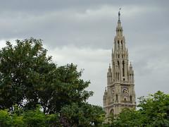 Das Rathaus (DorisFM) Tags: rathaus mairie cityhall ayuntamiento rboles trees viena vienna wien austria sterreich