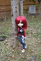 DSC_4641 (DollEmiou) Tags: doll pullip pullipfullcusto fc nezumi pullipsticafc obitsum wig red eyeships