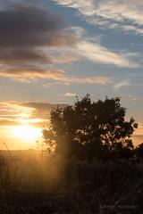 IMG_0463.jpg (Al Henderson) Tags: autumn miltonkeynes buckinghamshire landscape sunset snowdome clouds cranfield england unitedkingdom gb