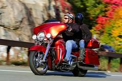 Harley-Davidson 1610164758w (gparet) Tags: bearmountain bridge road scenic overlook motorcycle motorcycles goattrail goatpath windingroad curves twisties couple couples