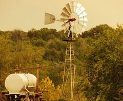 Hww Paulden, AZ (Douglas H Wood) Tags: windmill water paulden arizona ranch