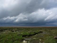 (rambling shorebird) Tags: clouds wolken insel northsea nordsee friesland wattenmeer waddensea nordseeinsel mellum sdfriesland