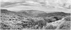 House_20140728_D_000044_st11_bw.jpg ( Steven House www.houselightgallery.com) Tags: panorama house france digital year country places stitched gard cevennes 2014 stevenhouse cameradetails houselightgallery
